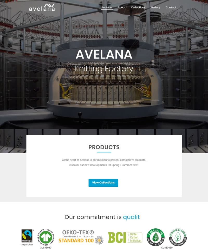 mitic-avelana-website